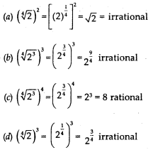 MCQ Questions for Class 10 Maths Chapter 1 Real Numbers with Answers 7