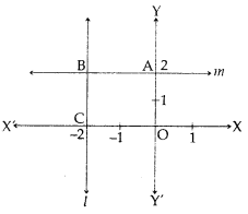 MCQ Questions for Class 10 Maths Chapter 3 Pair of Linear Equations in Two Variables with Answers 6