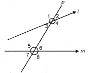 MCQ Questions for Class 7 Maths Chapter 5 Lines and Angles with Answers 8