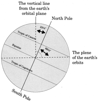 MCQ Questions for Class 6 Geography Chapter 3