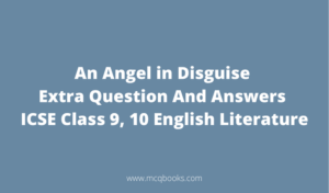 An Angel in Disguise Extra Question And Answers