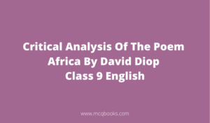 Critical Analysis Of The Poem Africa By David Diop