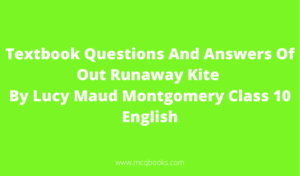 Textbook Questions And Answers Of Out Runaway Kite