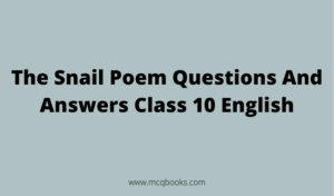 The Snail Poem Questions And Answers
